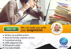 Support with assignments, dissertations & projects